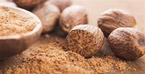Minyak Atsiri Biji Pala 20 manfaat dan khasiat biji pala untuk kesehatan khasiat