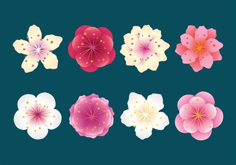 Blossom Collection 2set Free Blossom 1set plum blossom collection free vector stock graphics images