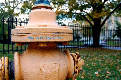 not too shabby yourself fire hydrant seen across from