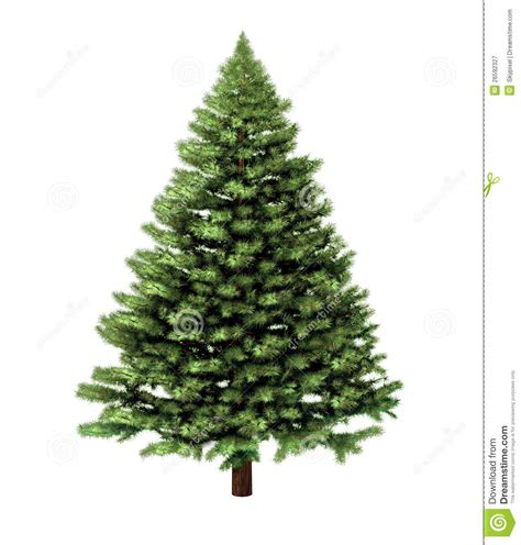 christmas trees photos free christmas lights decoration