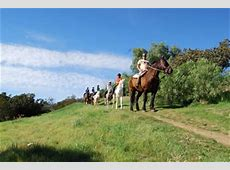 Information about Los Angeles Horseback Riding – Proposals ... Los Angeles Horseback Riding