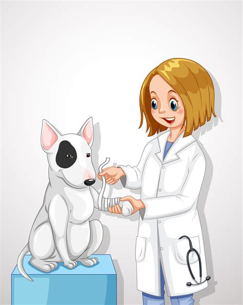 veterinarian doctor helping  dog   vectors clipart graphics vector art