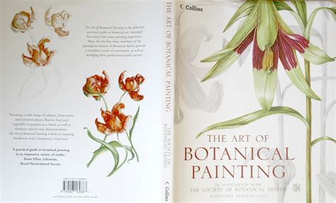 libro botany for the artist the art of botanical painting by botany