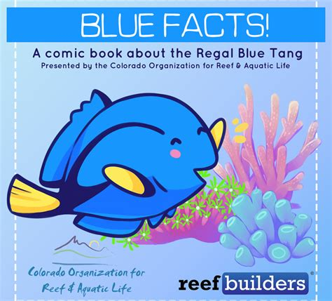 blue facts comic book about blue tangs debuting at macna