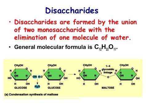 carbohydrates chemical formula metabolism of carbohydrates