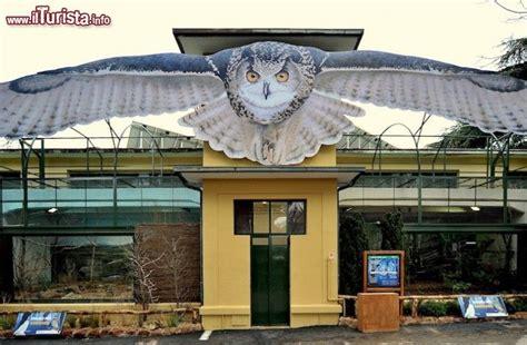 ingresso zoo roma ingresso dell area gufi al bioparco di roma foto
