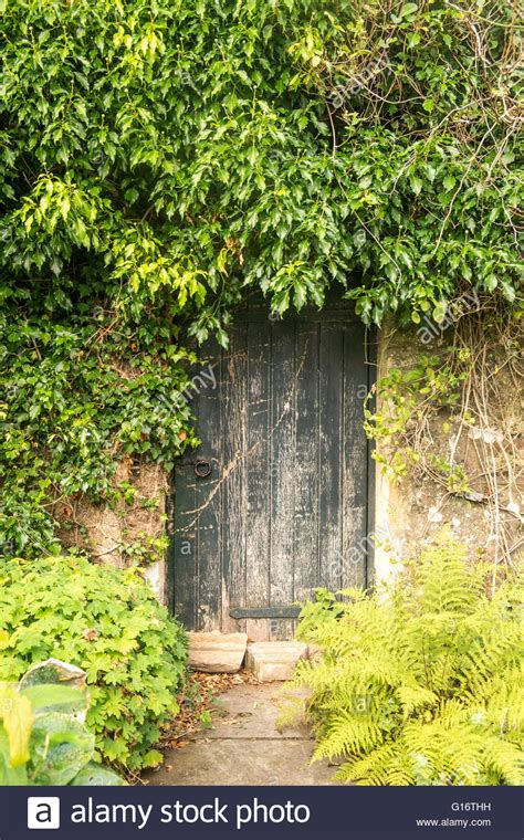door to secret garden surrounded by overgrown