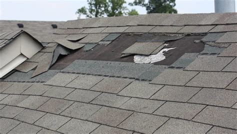 Spring Roof Inspection   How to Inspect Your Roof for
