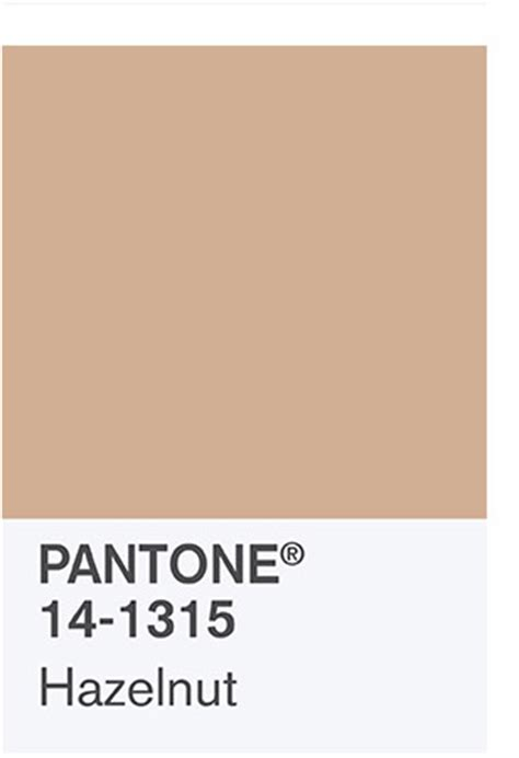 the 2017 color palette pantone 14 1315 hazelnut rounding out the 2017 colors is
