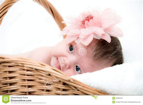 baby photo ideas royalty free digital stock photos for portrait newborn baby in basket royalty free stock