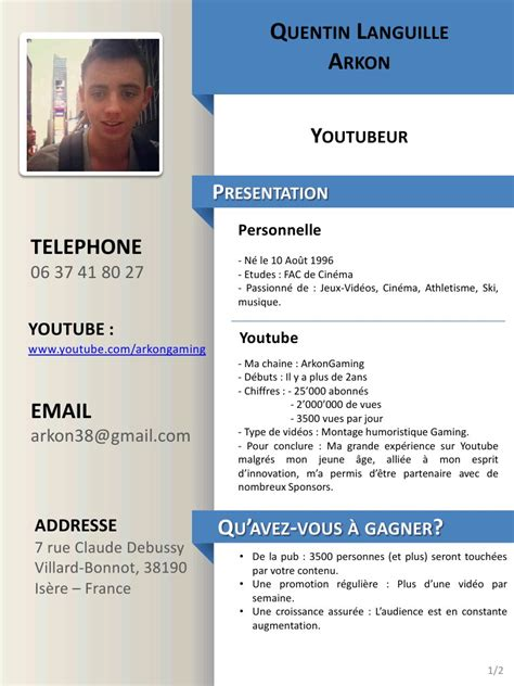 Exemple Cv Type by Type Cv Pdf Cv Anonyme