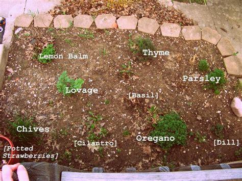 herb garden layout herb garden layout gardening