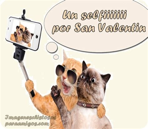 imagenes chistosas por san valentin imagenes del 14 de febrero