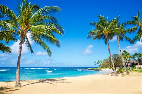 best beaches in world worlds best beaches the best beaches in the world by what
