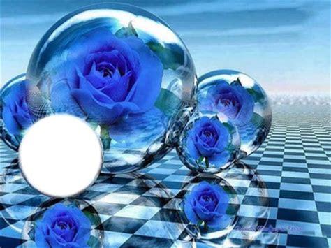 imagenes rosas de cristal montaje fotografico rosas en bolas de cristal pixiz