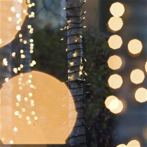 Outdoor Twinkle Lights by Outdoor Twinkle Lights White 40m 300 Led Outdoor