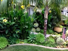 tropical landscape design tropical retreat newport
