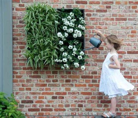 botanischer garten berlin samen kaufen 14 besten jungfrau im gr 252 nen nigella damascena bilder