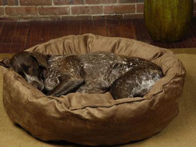 dog nesting bed dog beds large dog beds big shrimpy nest dog bed pets