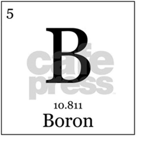 Boron Periodic Table by Boron Periodic Table Pint Glasses Boron Periodic Table