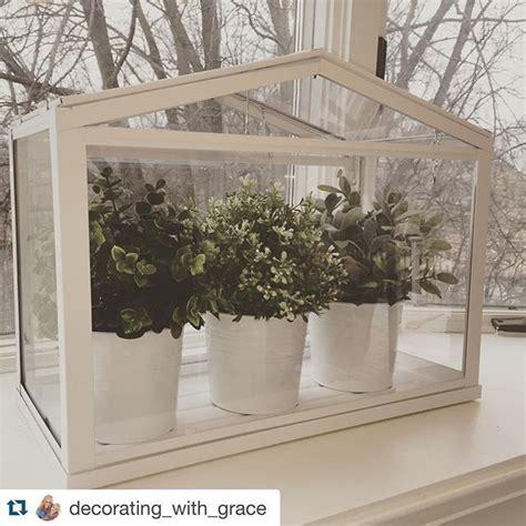 socker greenhouse 36 best interior design ikea socker images on pinterest