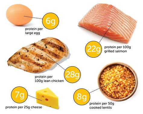 protein grams in chicken the problem with high protein diets 12wbt
