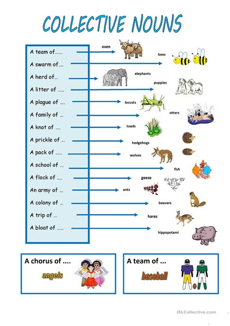 esl printable worksheet noun collective nouns worksheet free esl printable worksheets