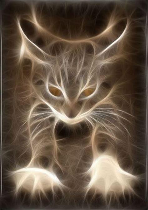 Cat Matrix Light Animal Animals Cat Cats Computer Graphics Image
