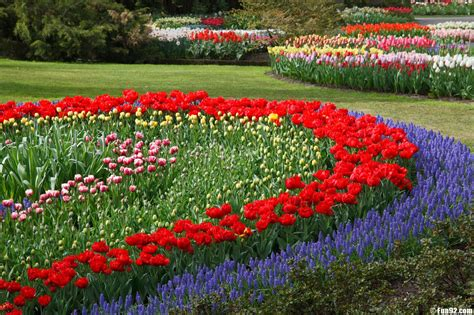 flower gardens in flowers garden wallpapers hd wallpapers