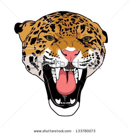 stock images similar to id 146543963 wild cat leopard