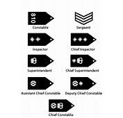 Police Detective Rank Structure