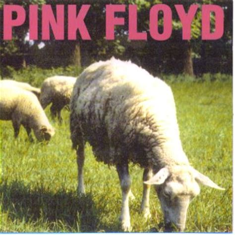 dogs pink floyd click cover for bigger image