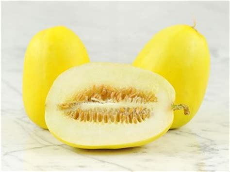 Melon Sweet golden sweet melon baker creek heirloom seeds