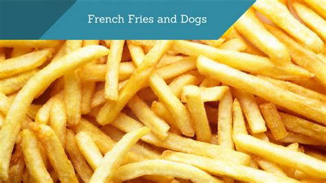 can dogs eat fries can dogs eat fries smart owners