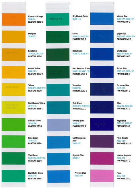 translucent color 3m translucent color chart sign anatomy