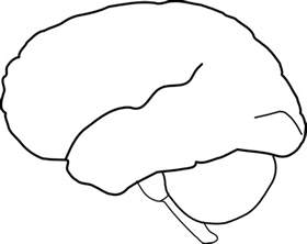 brain template brain outline clip at clker vector clip