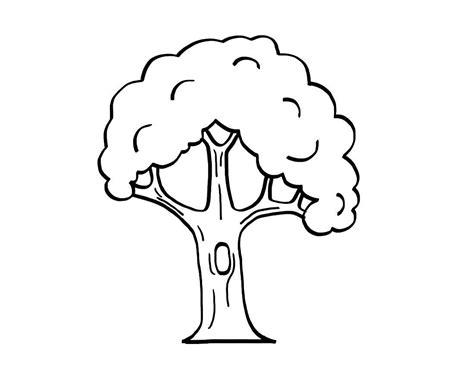 dibujos de rboles para colorear para ni os image gallery dibujo arbol