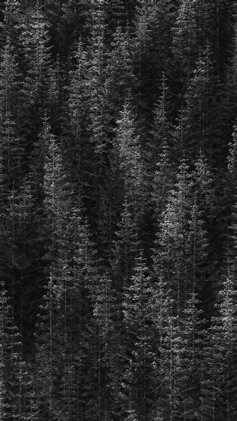 black wallpaper xl 10 of the most popular google pixel 2 xl wallpapers