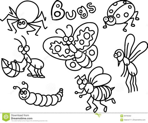 color bug bugs coloring page stock illustration image 69785562