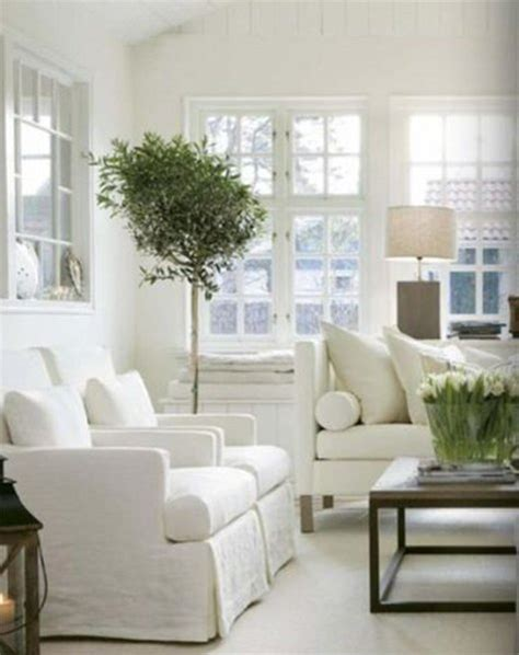 feng shui plants in living room how to feng shui your living room