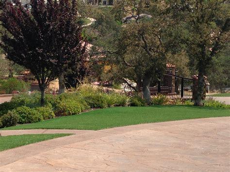 backyard turf cost artificial turf cost lakewood new jersey gardeners backyard