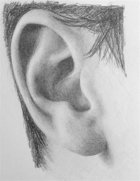 Drawing Ears how to draw a realistic ear step by step drawing