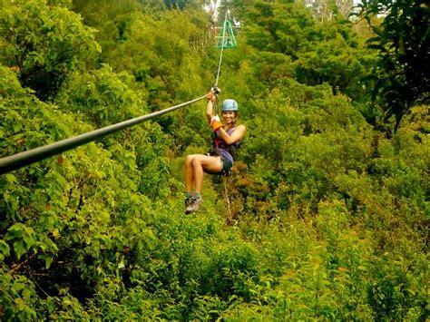 tarzan swing monteverde costa rica tarzan swing picture of monteverde extremo park santa