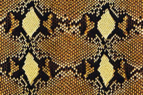 animal pattern artwork animal print just dip it