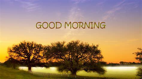 wallpaper free download good morning free hd good morning natural wallpapers download