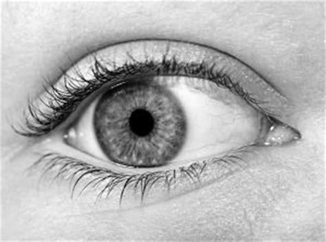 imagenes en blanco y negro de ojos los ojos en blanco y negro descargar fotos gratis