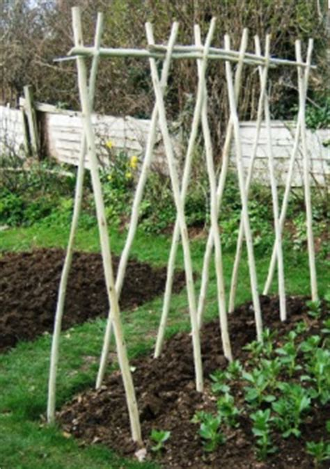 support   What is the best method for trellising green
