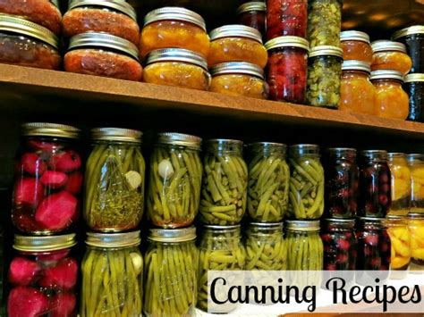 canning 101 pickled corn relish