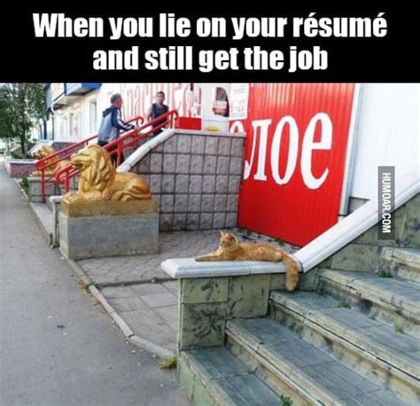 8 of the realest truths about resumes social talent