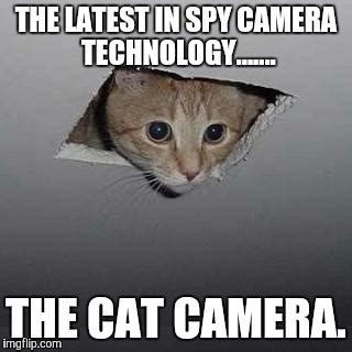 Meme Camera - ceiling cat meme imgflip